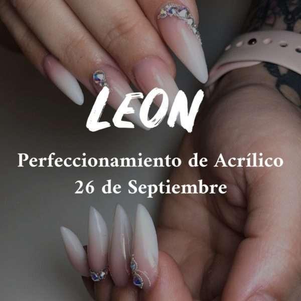 LEON – PERFECCIONAMIENTO ACRILICO