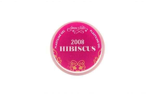 Gel Paste 2008 – Hibiscus